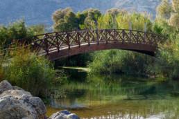 Mediazione linguistico-culturale: un ponte che unisce